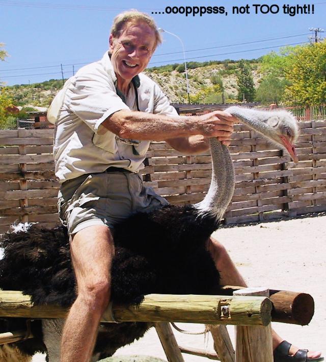 ostrich puter
