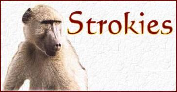 Strokies